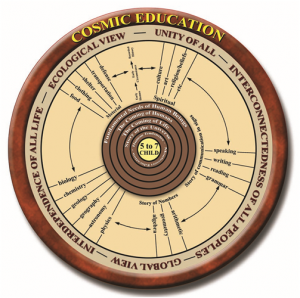 cosmiceducation
